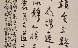 王大公书法