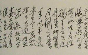 郭胜霞书法独立寒秋