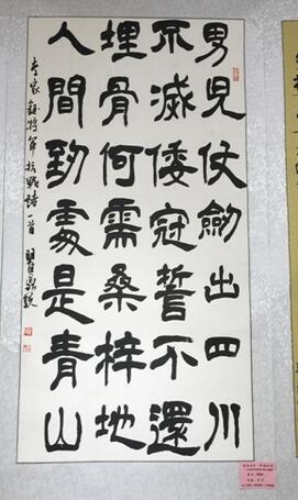 """瞿鼎 合肥11岁""""侠们""""摘得安徽省书法比赛第一名图片"""